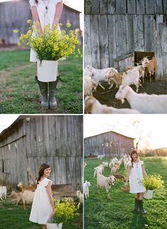 Country Farm Weddings | To see more photos of this stylized farm-to-table wedding session ...