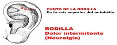 ASOCIACION INTERNACIONAL ACUPUNTURA TRADICIONAL VADEMACUM ORIENTATIVO PROF. DR. FERNANDO LURUEÑA: D