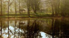 Dr. Pálffy István Égeresi tó egy áprilisi reggelen A Vértesben, nem messze Mórtól helyezkedik el, nagyszerű hely egy kis sétára, pihenésre. Több kép Istvántól: www.facebook.com/palffydr/photos_albums Country Roads, Album, Facebook, Card Book