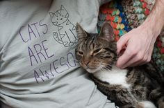 {cats are awesome}