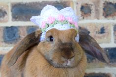 SALE // Crochet flower crown for bunnies pet by HealthyNibbles