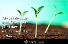 Enjoy the best Og Mandino Quotes at BrainyQuote. Quotations by Og Mandino, American Author, Born December Share with your friends. Brainy Quotes, Wise Quotes, Great Quotes, Motivational Quotes, Inspirational Quotes, Og Mandino Quotes, Reap What You Sow, Apps, Do Your Best