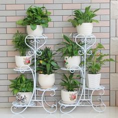 Indoor Plant Stand Saibo Shelves Pot Corner Stand Home Office Decor Gift Indoor Plant Shelves, Indoor Plants, House Plants Decor, Plant Decor, Garden Deco, Garden Pots, Garden Terrarium, Balcony Garden, Chlorophytum