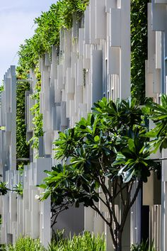White latticed screens and trailing planting shade the glazed facade of this day spa by MIA Design Studio from the midday sun