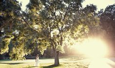 » Rochester Wedding Photographer – John Larkin Photography