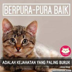Berpura-pura baik - #GambarLucu #MemeLucu - http://www.indomeme.com/meme/berpura-pura-baik/
