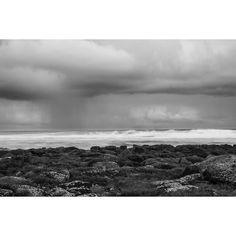Rain at Port Fairy Earlier this week #portfairy #victoria #southbeach #australia  #sunset #coast #ocean #portfairypics #aussiephotos_apr2016 #beach #ladyjuliapercyisland #island #nature #liveinvictoria #rocks #autumn #ausfeels #seeaustralia #destinationportfairy #longexposure #bestbeach #blackandwhite #bnw_captures #seascape #rainclouds #rain #april by edgeofaustralia