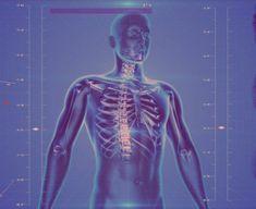 Betegségek Lelki Okai és Gyógyításuk-Teljes lista - Funland Stress Management, Interesting Facts About Humans, Amazing Facts, Improve Kidney Function, Human Body Facts, Human Tissue, Endocannabinoid System, Lunge, Health