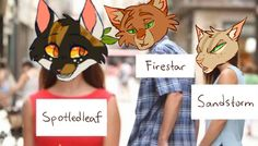 I love this Pin!! I personally think Firestar should be more Red but that's just me. Poor poor Spottedleaf.