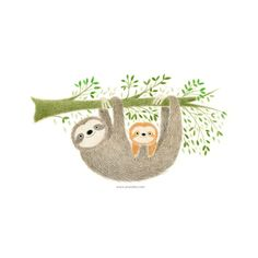 A Drawing A Day | Sloth | Colored Pencil Original Drawing by punchyandtwinkle on Etsy