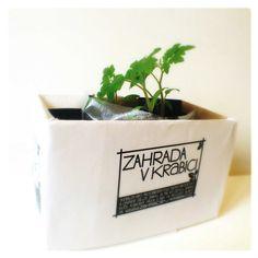 http://zahradavkrabici.tumblr.com