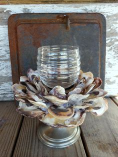 Oyster Shell Candle Holder by searchnrescue2 by searchnrescue2, $34.00