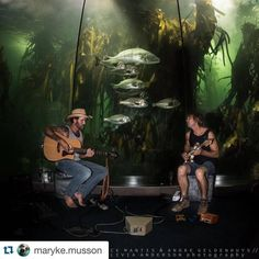 We were lucky to have Jack Mantis and Andre Geldenhuys perform here for the birthday of our Curator Maryke Musson in March 2016 Ocean Aquarium, Cape Town, Oceans, Rooftop, Conservation, Diving, South Africa, Two By Two, March