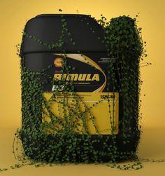 Shell Rimula 3D - conceito natureza