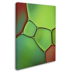 "Trademark Art Stained Glass IV by Cora Niele Photographic Print on Wrapped Canvas Size: 32"" H x 24"" W x 2"" D"