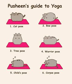 20 best pusheen images  pusheen pusheen cat pusheen love