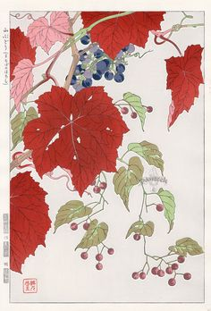 Wild Grapes from Shodo Kawarazaki Spring Flower Japanese Woodblock Prints