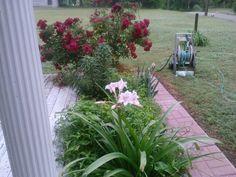 Flower garden by me