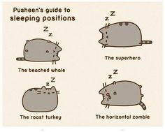 Pusheens guide to sleeping positions