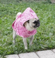 Garden Gate Raincoat for Dogs available at http://doggyinwonderland.com/item_1988/Garden-Gate-Raincoat-for-Dogs.htm