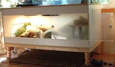 Timeless Spirit Enclosure - Complete, Detailed Instructions: How to Build Our Bearded Dragon Enclosure Bearded Dragon Terrarium, Bearded Dragon Cage, Bearded Dragon Habitat, Reptile Habitat, Reptile Room, Reptile Cage, Tortoise Habitat, Bartagamen Terrarium, Reptile Terrarium