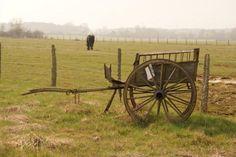 Poulaines, village près de Valençay.. fief des ânes #berry #tradition