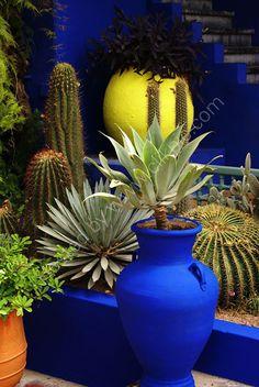 BLUE Moroccan garden-love the colors