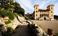 Fattoria i Bonsi, #Laudemio producer in Reggello, Florence, #Tuscany