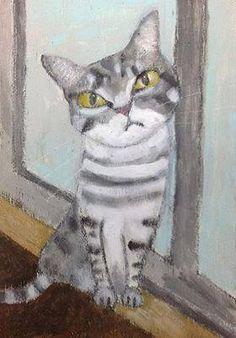 chat rayé