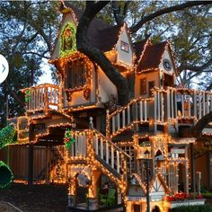 Treehouse Masters Tree Houses Inside what a great tree house | camping things | pinterest | tree houses