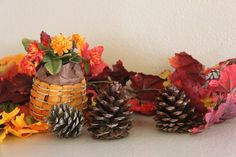 There are several easy methods for creating homemade cinnamon-scented pine cones.