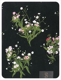 Floral sprigs. Dark background is making a huge impact here...