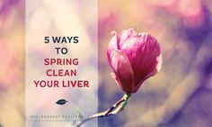 Radiant Reality Blog | 5 Ways To Spring Clean Your Liver