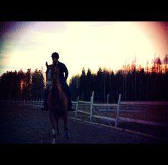 Ridingwinterspring