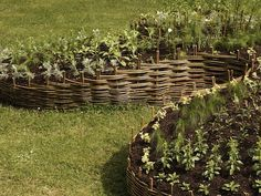 Woven raised bed from willow.