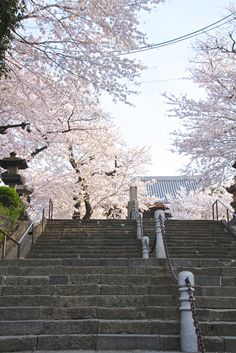 yudoku: by yohey yamagata