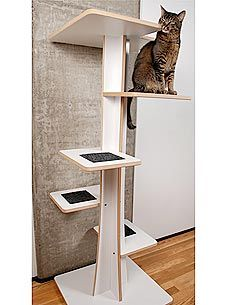 REVIEW: A Cat Tree that Quietly Brings the Outside In http://www.peoplepets.com/people/pets/article/0,,20494677,00.html