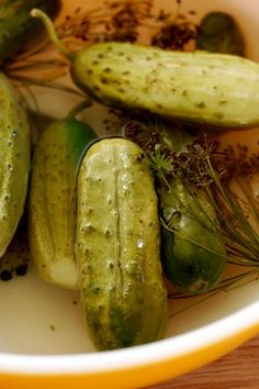 The World's Best (and Easiest) Dill Pickles  | Spoonful  ...just made these today!