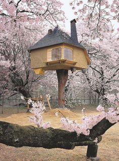 Japanese zen tree tea house; La cabane zen perchée dans les arbres - L'esprit cabane - CôtéMaison.fr