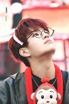Stray Kids y tu Lee Min Ho, Elvis Presley, Kids Glasses, Stray Kids Seungmin, Peinados Pin Up, Pre Debut, Korean Boy, Survival, Lee Know