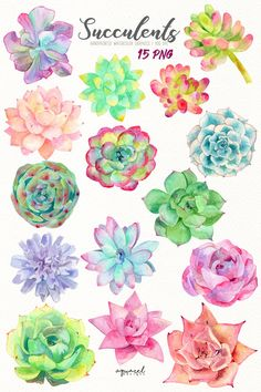 Aquarela floral Article Physique: Jewellery is a most necessary a part of trend from the very length Succulents Wallpaper, Succulents Drawing, Watercolor Succulents, Watercolor Flowers, Watercolor Paintings, Succulents Painting, Watercolor Wedding, Simple Watercolor, Watercolour