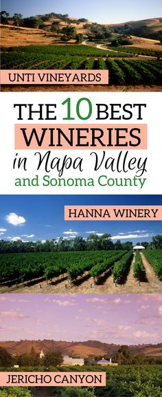 Ready to taste the most amazing wine? Here it's a list of the 10 best wineries in Napa Valley and Sonoma County, California, as recommended by the local experts! | Sonoma county wineries | Napa Valley vineyards Sonoma County | Best vineyards in Napa Valley | Best vineyards in Sonoma #napavalley #sonoma #napa - via @elainschoch