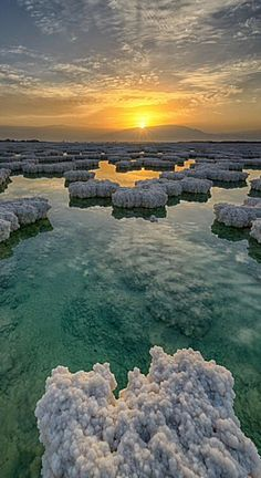 Dead Sea . Israel                                                                                                                                                                                 More