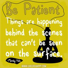 Be patient. Things are happening behind the scenes that can't be seen on the surface. - Mandy Hale