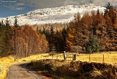 Glen Orchy by .Brian Kerr Photography., via Flickr