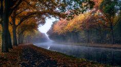 Autumn in belgium - null