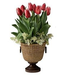 Tulip Pedestal Basket in Holiday 2012 from Wind & Weather on shop.CatalogSpree.com, my personal digital mall.