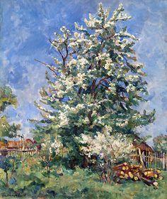 Pear Tree in Blossom Pyotr Konchalovsky - 1927