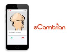 Join the Cambrian Dating Scene Science Games, Educational Games, Join, Dating, Scene, Quotes, Learning Games, Relationships