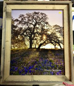 Bluebonnet Sunrise by AnotherTessCreation on Etsy, $50.00